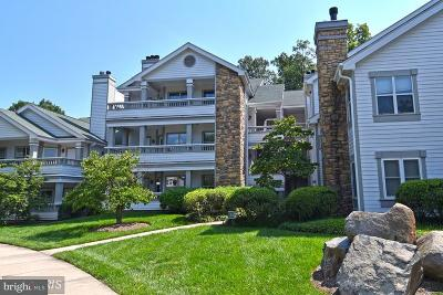 Fairfax Multi Family Home For Sale: 13070 Autumn Woods Way