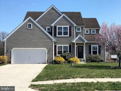 Milford Single Family Home For Sale: 115 Starland Way