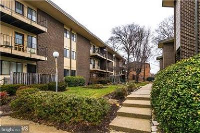 Suitland Rental For Rent: 3926 Stone Gate Drive #C