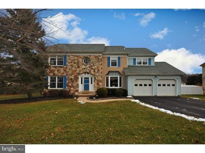 Phoenixville Single Family Home For Sale: 103 Valley View Circle