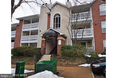 McLean VA Condo For Sale: $233,000