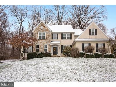 Downingtown Single Family Home For Sale: 110 Somers Drive