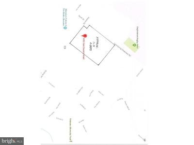 Bucks County Residential Lots & Land For Sale: 3953 E Swamp Road