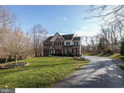 Collegeville Single Family Home For Sale: 444 Kirsten Circle
