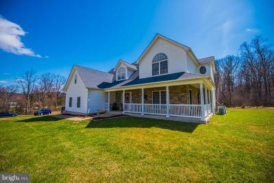 Rappahannock County Single Family Home For Sale: 91 Chester Gap Road