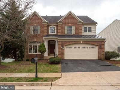 Springfield Single Family Home For Sale: 8609 James Creek Drive