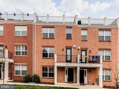 Baltimore Townhouse For Sale: 4638 Dillon Place