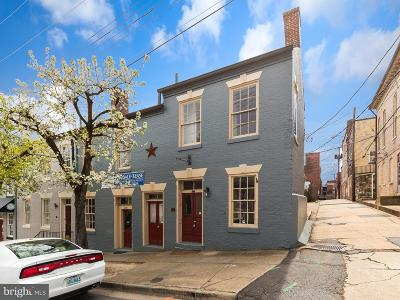 Fredericksburg City Townhouse For Sale: 210 George Street