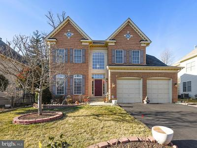 Falls Church Single Family Home For Sale: 6436 South Street