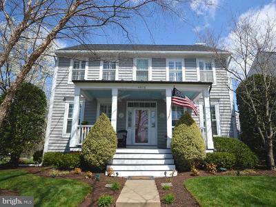 South Riding Single Family Home For Sale: 43218 Chase Street