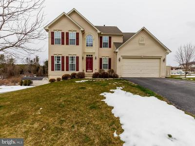 Spring Grove Single Family Home For Sale: 520 Lakeview Drive