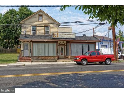 Woodbury Commercial For Sale: 417 Salem Avenue