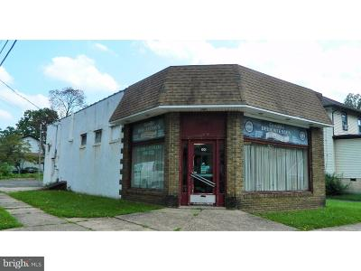 Woodbury Commercial For Sale: 100 S Warner Street