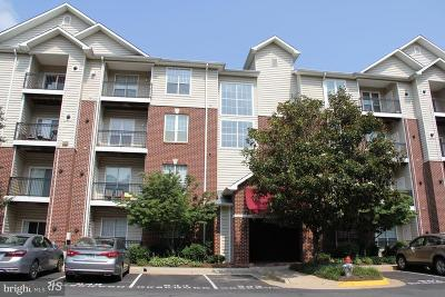 McLean Rental For Rent: 1580 Spring Gate Drive #4102