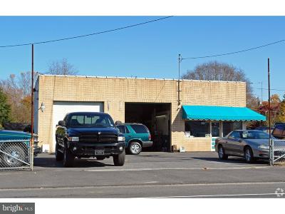 Franklinville Commercial For Sale: 2238 Delsea Drive