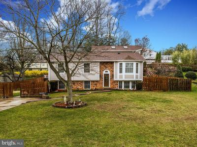 Silver Spring Single Family Home For Sale: 14225 Piccadilly Road
