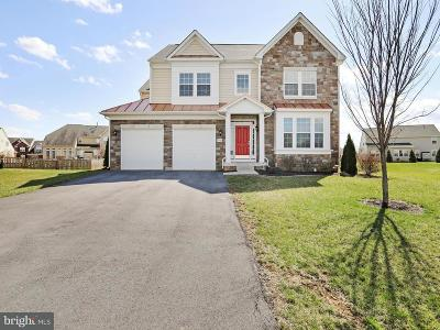 Hagerstown Single Family Home For Sale: 9704 Falkirk Terrace