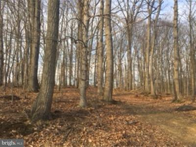 Thorndale Residential Lots & Land For Sale: 919 N Bailey Road