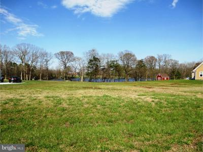Houston Residential Lots & Land For Sale: 141 Glen Loch Lane