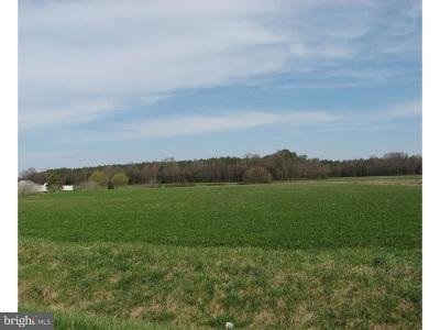 Harrington Residential Lots & Land For Sale: X Flatiron Road