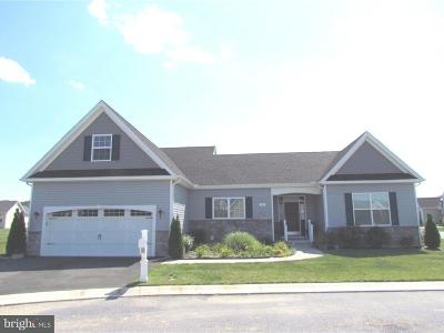Dover Single Family Home For Sale: 10 Bridle Court