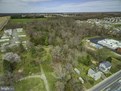 Cheswold Residential Lots & Land For Sale: 281 Main Street