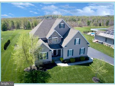Kent County Single Family Home For Sale: 198 Chanticleer Circle