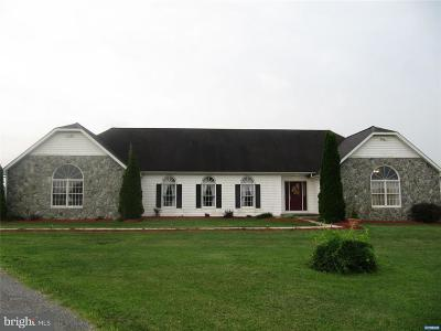 Hartly Single Family Home For Sale: 142 Bryants Corner Road
