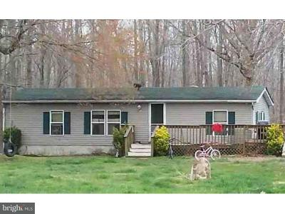 Smyrna Single Family Home Under Contract: 596 Big Woods Road