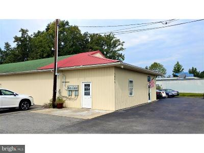Commercial For Sale: 5099 Dupont Highway #B