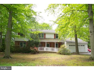 Kent County Single Family Home For Sale: 20 Laurel Drive