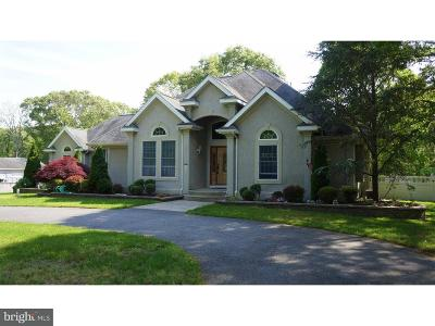 Hammonton Single Family Home For Sale: 1010 N Chew Road