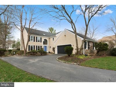 Bryn Mawr Single Family Home For Sale: 6 Stone Creek Lane