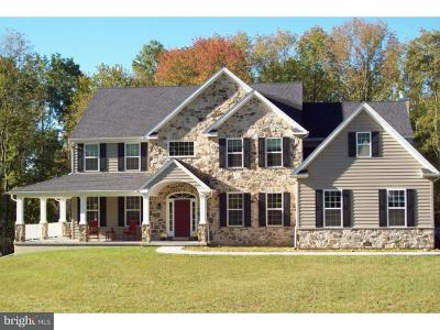 Bucks County Single Family Home For Sale: 841 Swamp Road