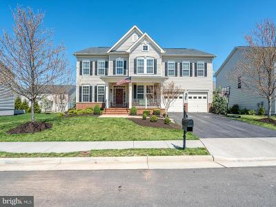 Loudoun County Single Family Home For Sale: 42970 Tealbriar Place