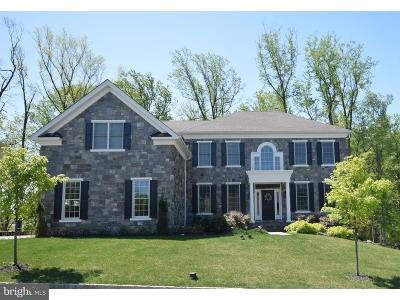 Newtown Square Single Family Home For Sale: 3908 Lewis Run Road