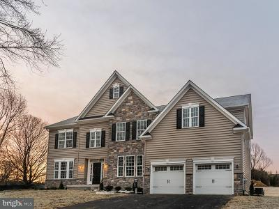 Hockessin Single Family Home For Sale: 1615 Brackenville Road