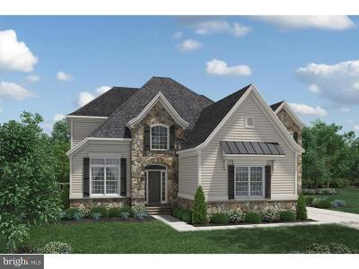 Newtown Square Single Family Home For Sale: 299 Orchard Lane #MAGNOL