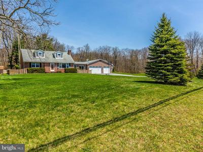 Smithsburg Single Family Home For Sale: 4128 Foxville Road
