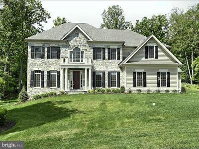 Howard County Single Family Home Under Contract: 12411 All Daughters Lane