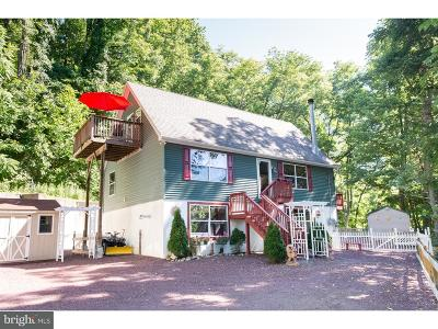 Bucks County Single Family Home For Sale: 241 Spring Hill Road