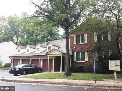 Annandale Rental For Rent: 7262 Glen Hollow Court #2