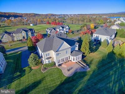Leesburg Single Family Home For Sale: 41613 Swiftwater Drive