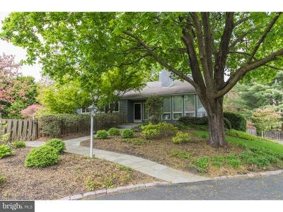 Doylestown Single Family Home For Sale: 2354 Turk Road