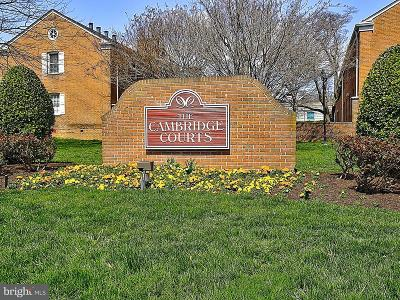 Arlington Condo For Sale: 2705 Arlington Boulevard #105