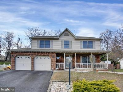 New Cumberland Single Family Home For Sale: 395 Benyou Lane