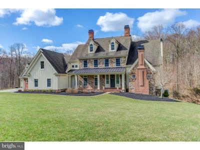 Chadds Ford PA Single Family Home For Sale: $1,249,000