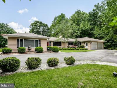 Edgewater, Mayo Single Family Home For Sale: 3906 W Shore Drive