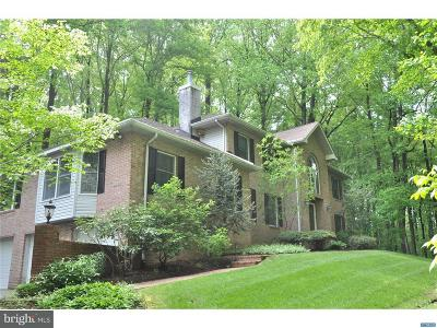 Newark Single Family Home For Sale: 233 Upper Pike Creek Road