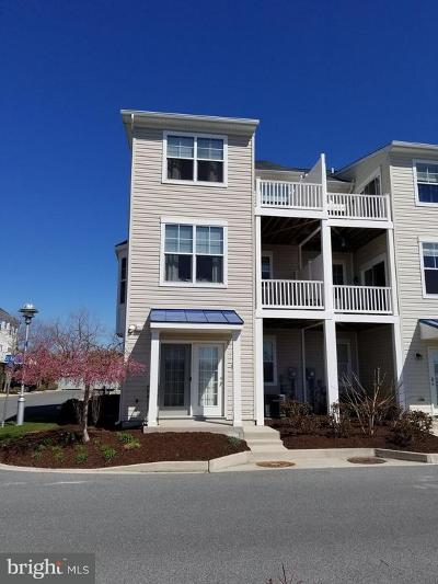Dorchester County Rental For Rent: 401 Seaway